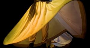 TReserpDA4_dans